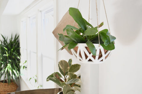 Porcelain Hanging Planter - Small
