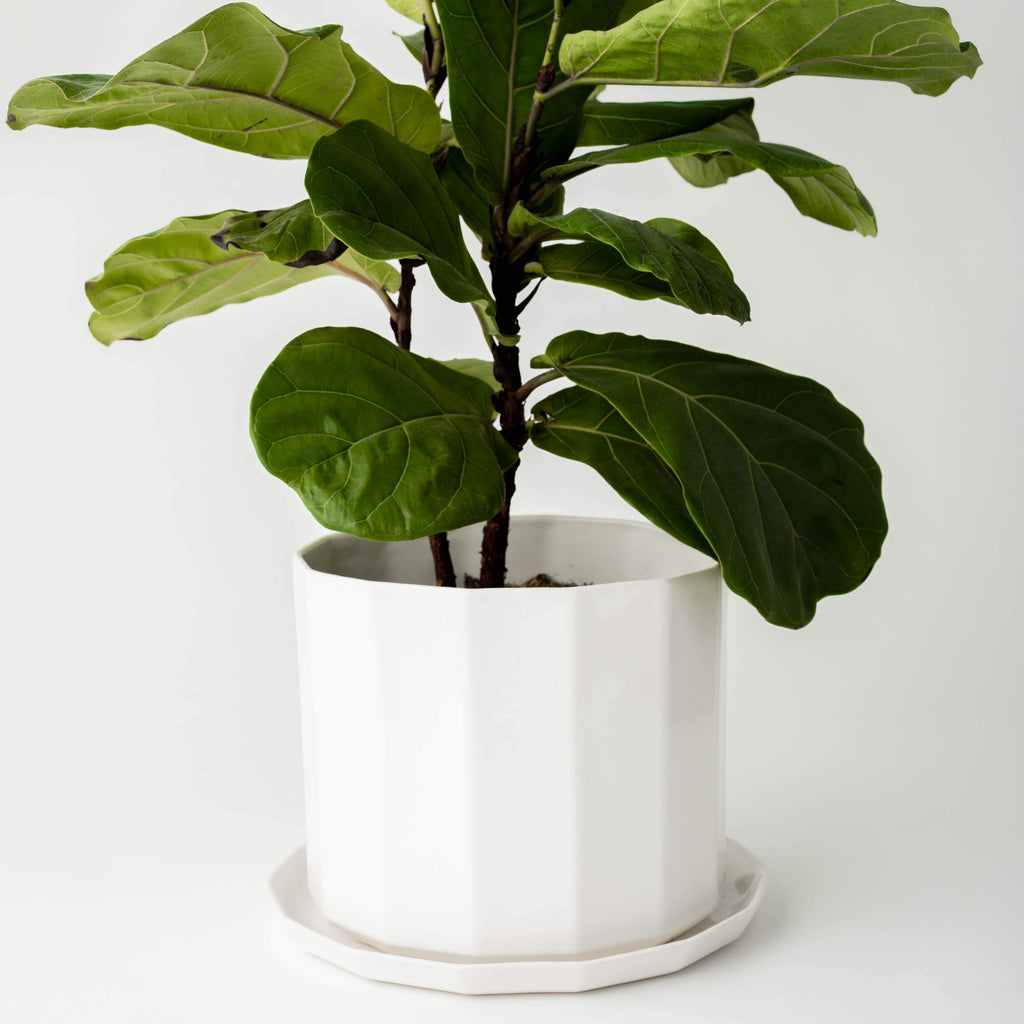 Riveted Planter | 10"
