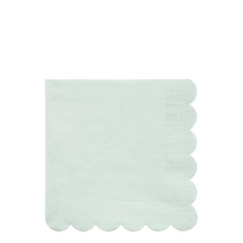 Large Pale Mint Eco Napkins
