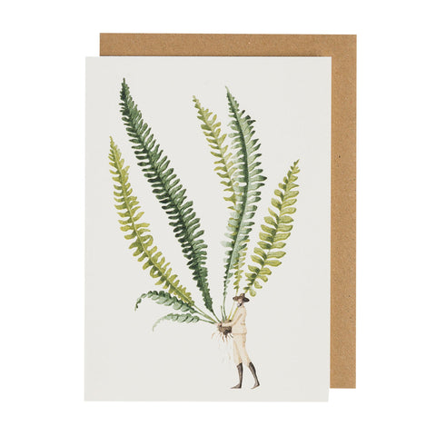 Fabulous Ferns 1 Greeting Card