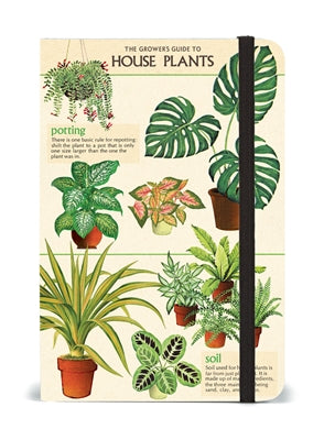 Small House Plants Notebook