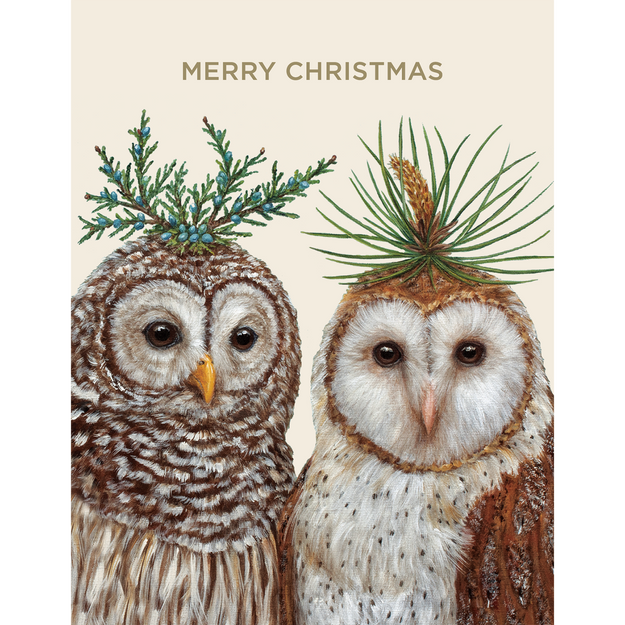 Winter Owls Boxed Set Cards