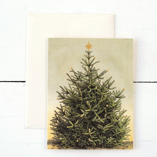 Christmas Tree Boxed Set Cards