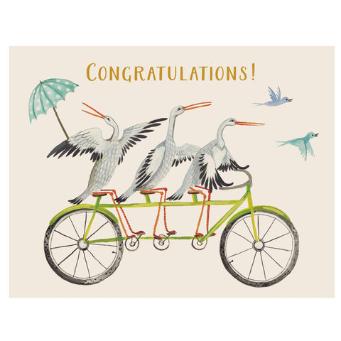 Congratulations Stork Trio Card