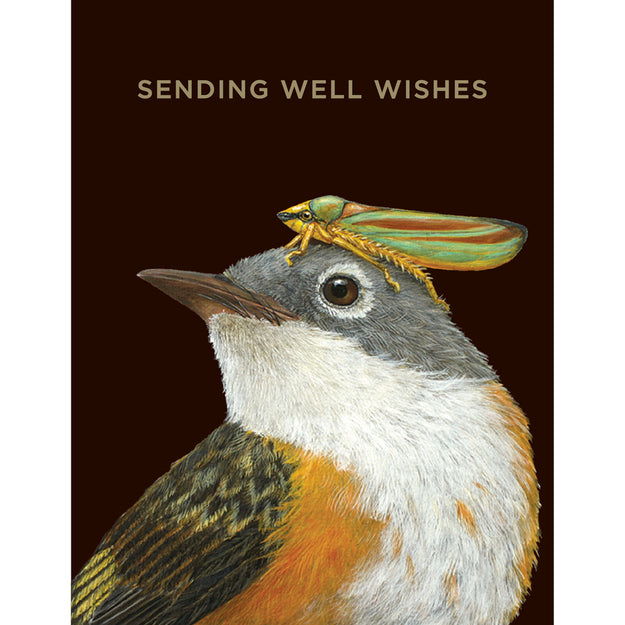 Well Wishes Warbler Card