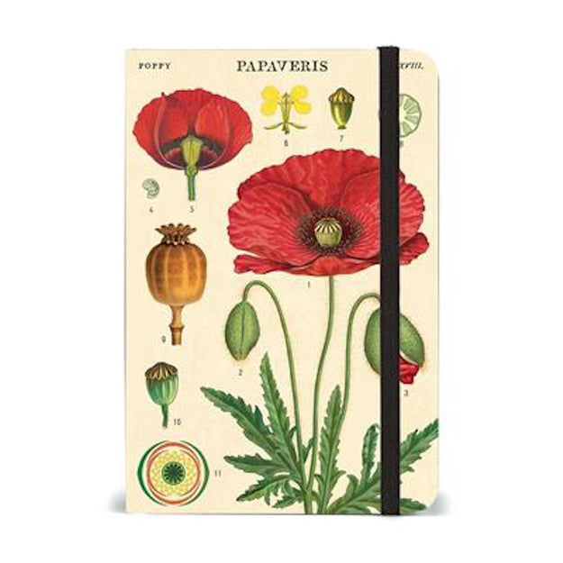 Small Botany Notebook