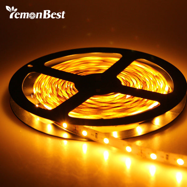 300 Leds Waterproof IP65 strip Light SMD3528 Flexible Strip Lamp Warm/Cold White+2A transformer Home Party Decoration