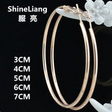 2018 Big Circle Hoop Earrings for women female nightclub DJ big fashion rose gold ring ear jewelry Wholesale support 30/50/70MM