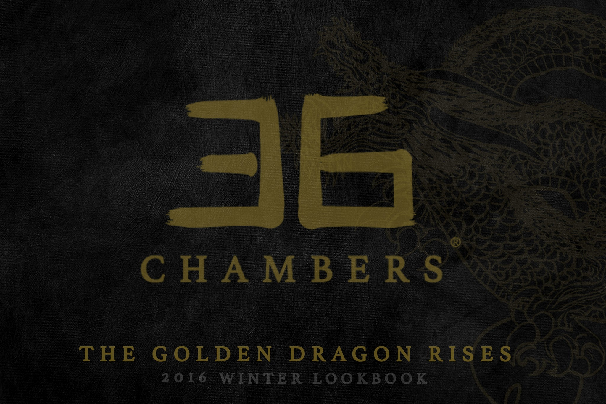 36 Chambers - The Golden Dragon Rises - 2016 Winter Lookbook