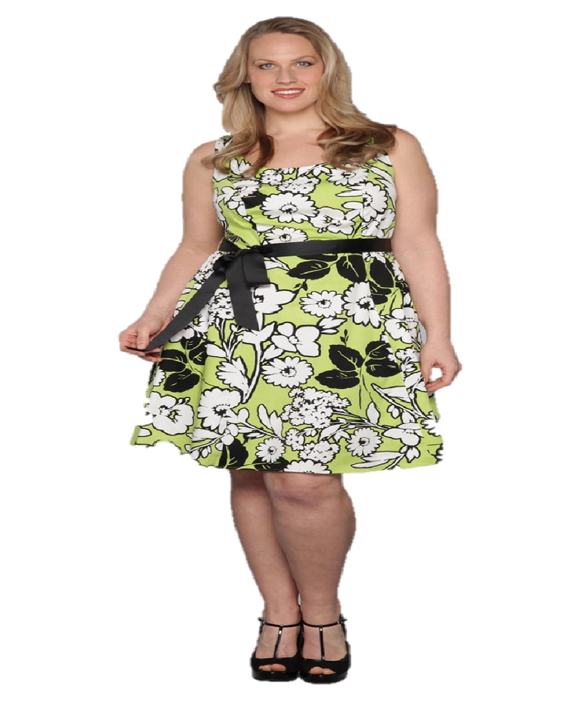 Women's Plus Size Floral Lime Green and White Floral A-Line Plus Size Dress Size 14W