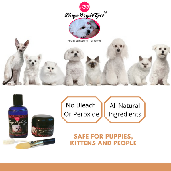 Always Bright Eyes Tear Stain Remover For Dogs and Super Whitening Concentrated Tear Stain Face Wash Shampoo With Optical Brighteners