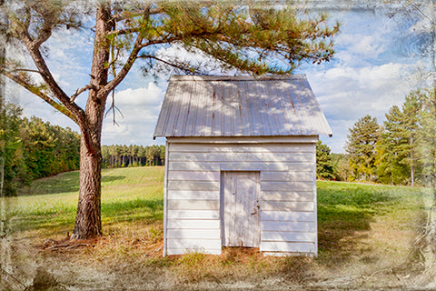 Shed, Harvey Rucker's Place Photography Mel Curtis Color- Portfolio2 Gallery