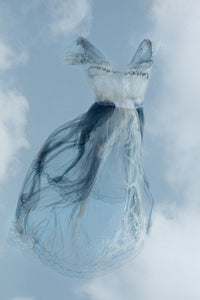 Into the Clouds Photography Rosanne Olson- Portfolio2 Gallery