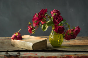 Roses and Book Photography Rosanne Olson- Portfolio2 Gallery