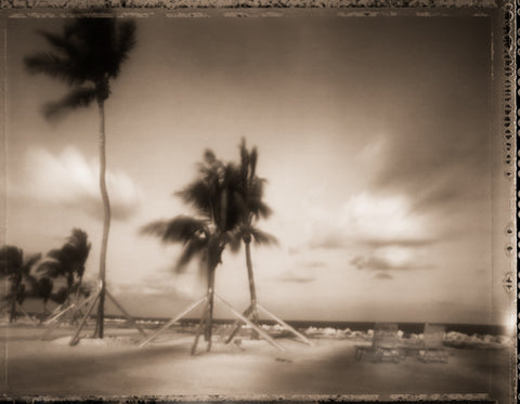 Tropical Storm Photography Rosanne Olson- Portfolio2 Gallery