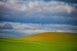 Palouse #28 Photography Mel Curtis Color- Portfolio2 Gallery