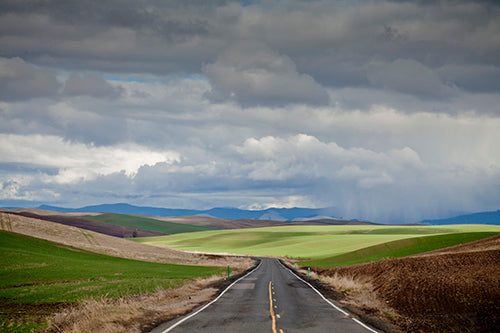 Palouse #49 Photography Mel Curtis Color- Portfolio2 Gallery