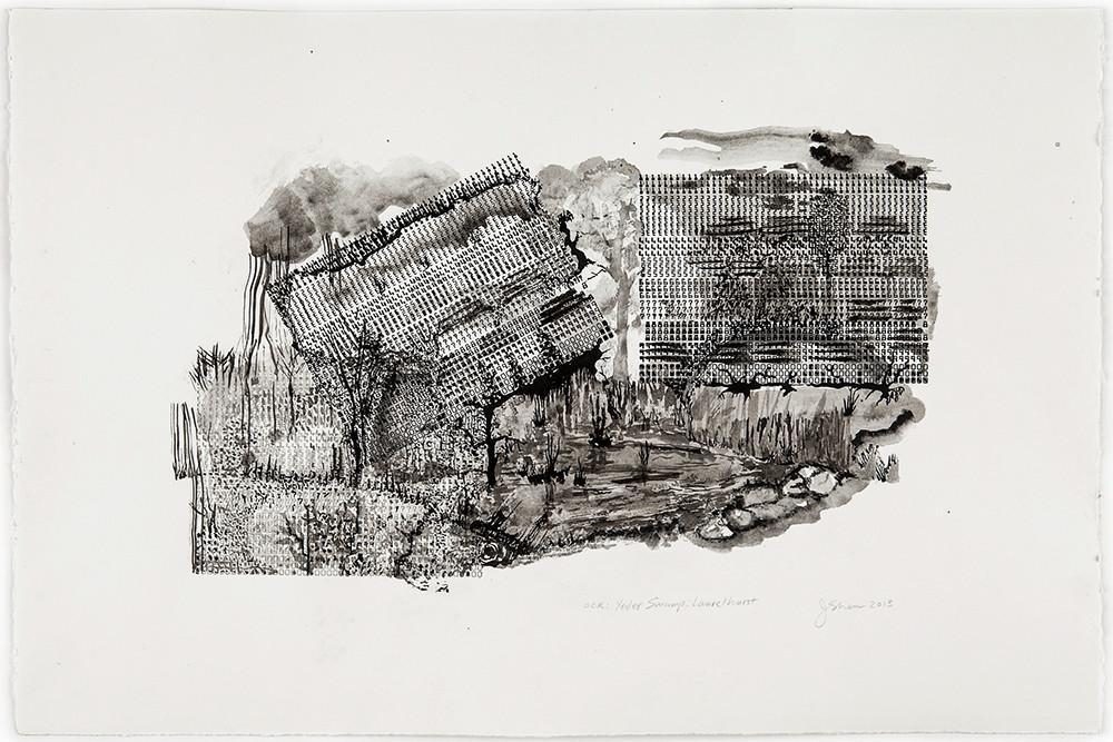 OCR: Yesler Swamp Drawings Juliet Shen- Portfolio2 Gallery