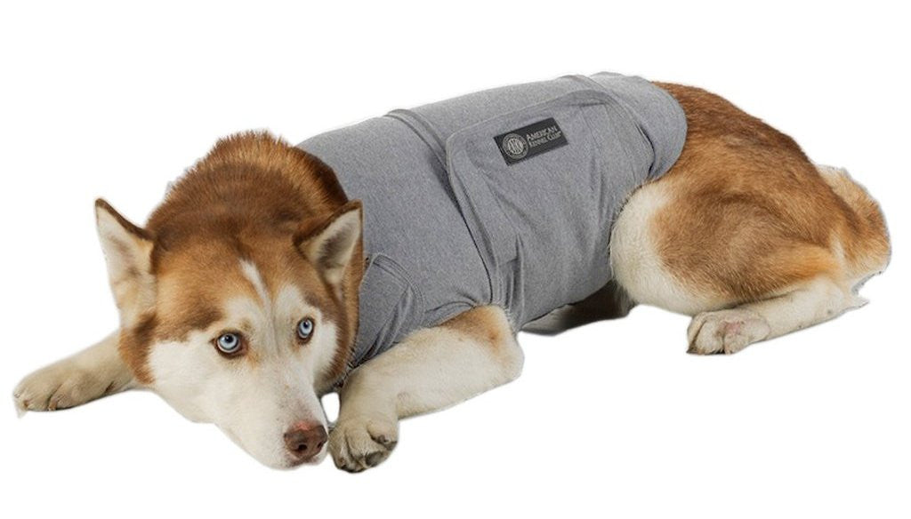 Dog Calming Coat