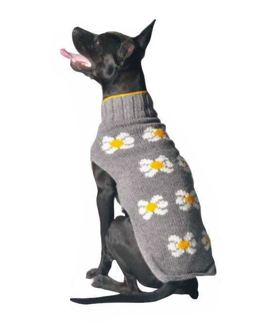 "Apparel - Sweater - Wool - ""Daisy"""