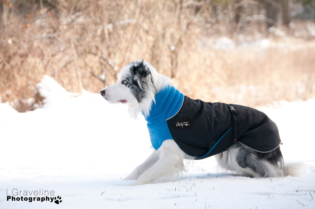 Apparel - Coat - Winter - Great White North