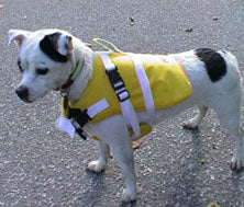 Outdoors - LIfe Jacket (Neo Paws)