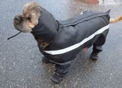 Dog Rainsuit with Legs