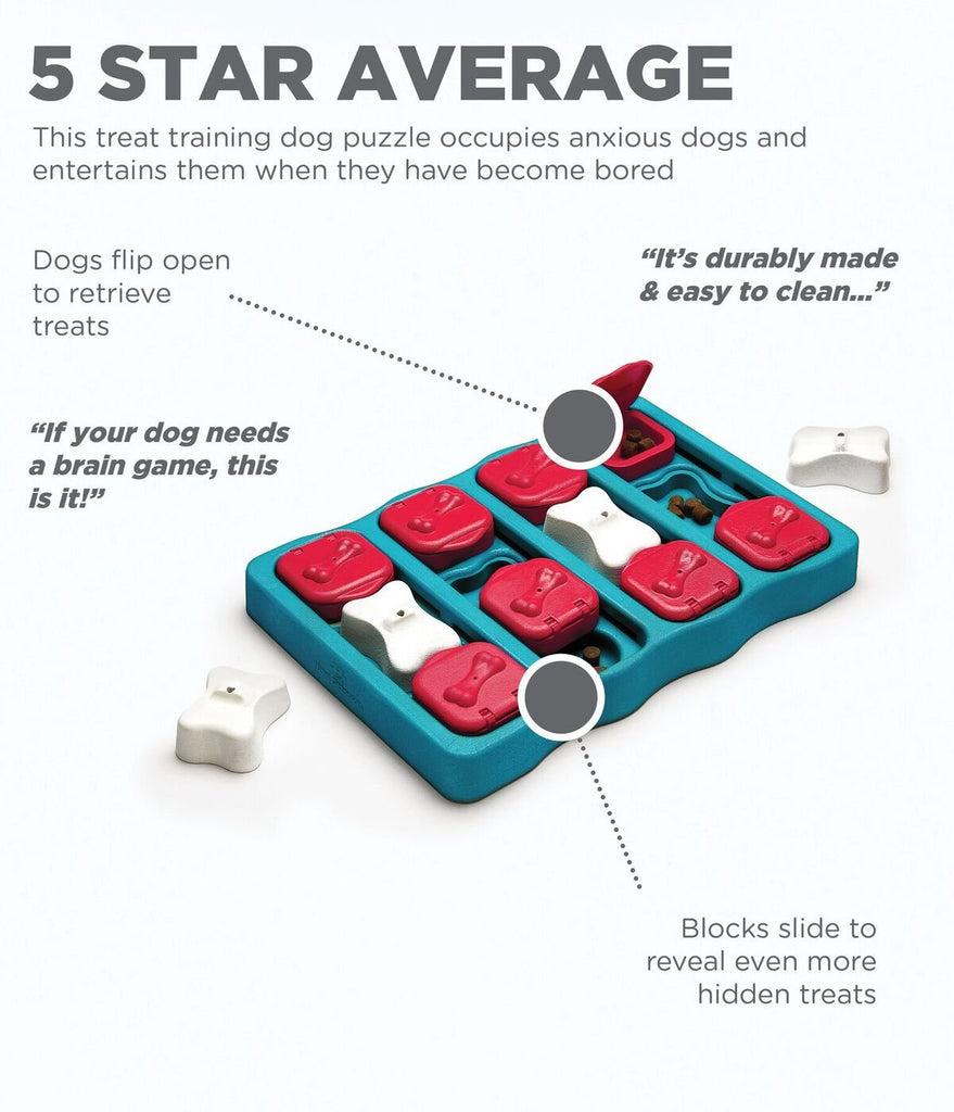 *Brain Exercise Game for Dogs - Dog Brick