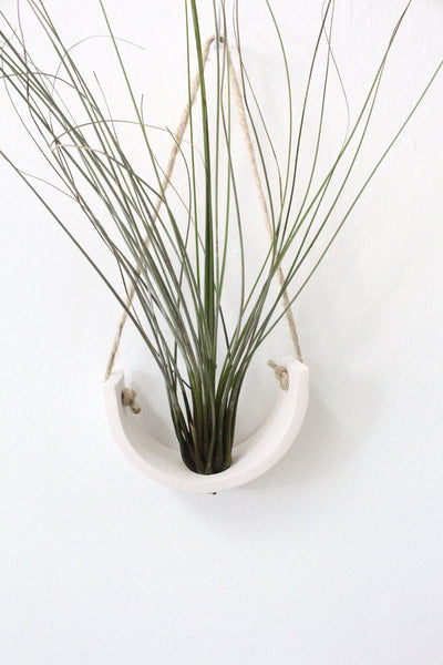 Mudpuppy Air Plant Cradle Planter Natural White Earthenware