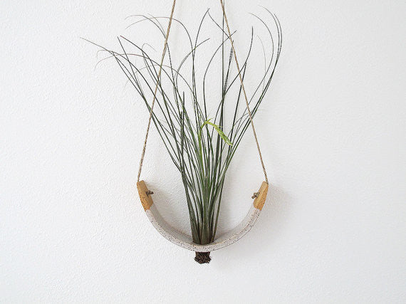 Mudpuppy Hanging Air Plant Cradle Speckled Buff