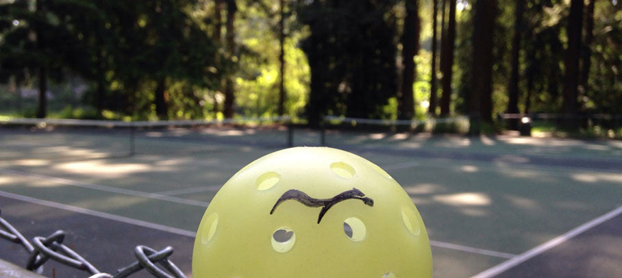 Where to Play Pickleball in Bellingham, WA...
