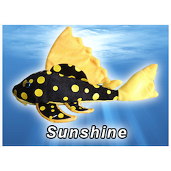 Sunshine Pleco Plush! - KGTropicals