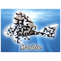 Marble Pleco Plush! - KGTropicals
