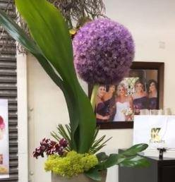 360 Degree View of the Amazing Gigantum Allium Flower - a Summer Specialty we can't get enough of!