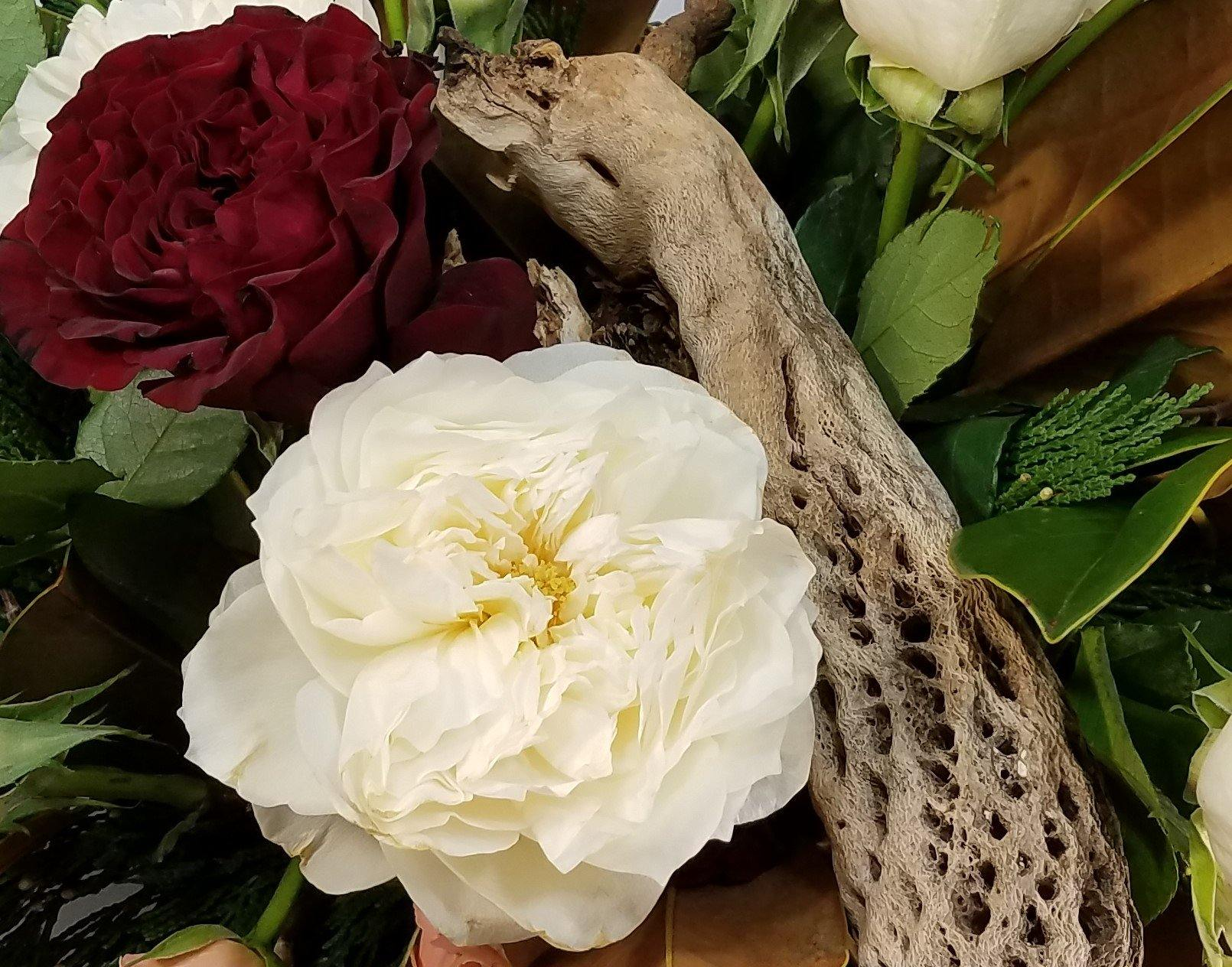 Peonies for Christmas?!! They're here! ... and Tips for buying them for yourself