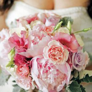 12 Reasons to LOVE Peonies!