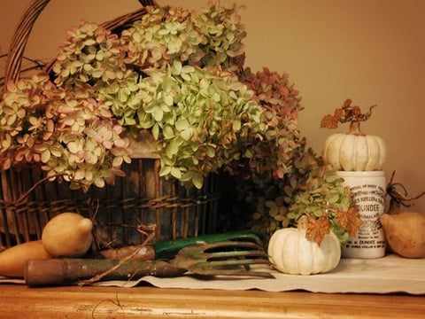 https://freshome.com/2012/09/17/easy-and-inexpensive-ways-to-transition-your-home-from-summer-to-fall/#sign_modal