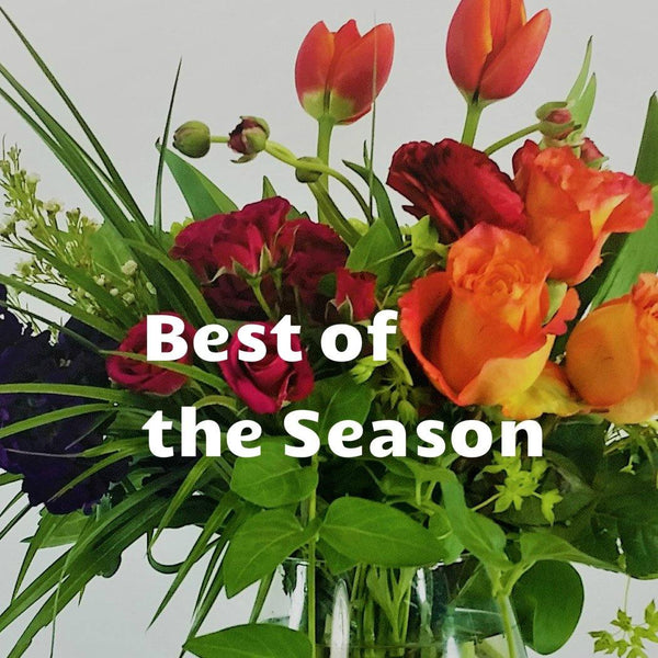 Best Flowers of the Season - God's Garden Treasures