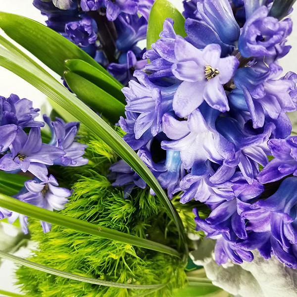 Fragrant Hyacinth Flowers - God's Garden Treasures