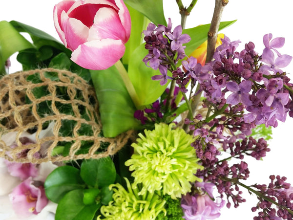 Spring Wonder - God's Garden Treasures