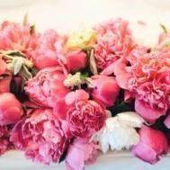 Peonies for Valentine's Day