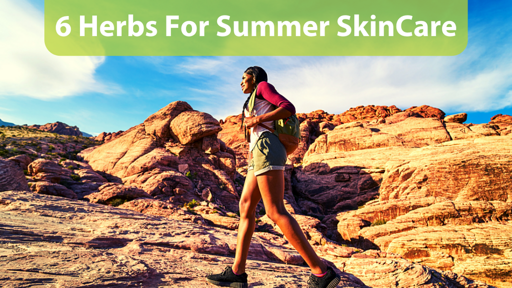 6 Herbs For Summer Skincare