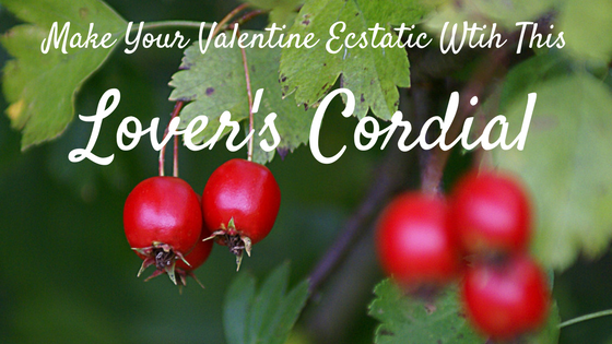 Make Your Valentine Ecstatic With This Lover's Herbal Cordial