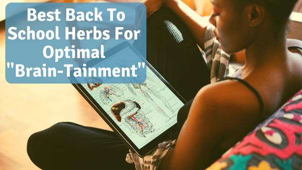 Best Herbs To Maintain Your Brain For Back To School