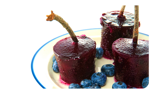 Immune Boosting Elderberry Syrup Popsicles