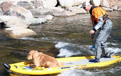 Boardworks_Badfish_Stand_Up_Paddle_MCIT_with_dogs