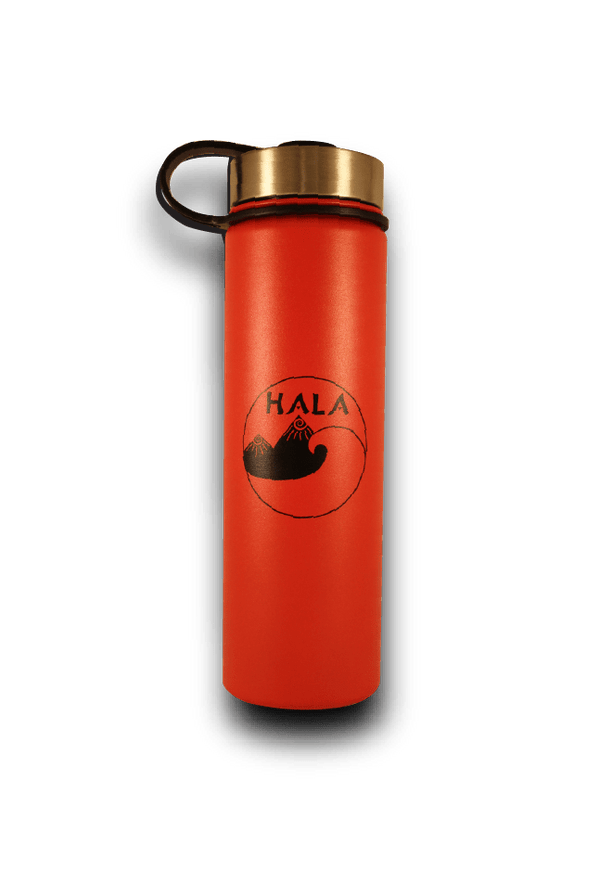 22oz Insulated Stainless Steel Water Bottle