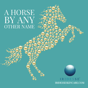 A Horse By Any Other Name.