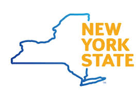NY Electric Gov