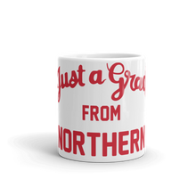 Northern Illinois Mug